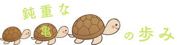 鈍重な亀の歩み